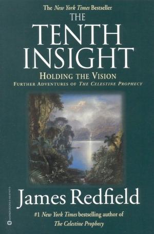 INSIGHTS CELESTINE PROPHECY