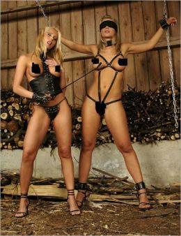 Lesbian Sex Slave Pics 119