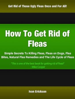 how to get rid of fleas simple secrets to killing fleas fleas on dogs flea bites natural. Black Bedroom Furniture Sets. Home Design Ideas