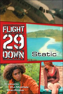 Flight 29 down book series