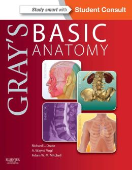 gray utes structure critique booklet online