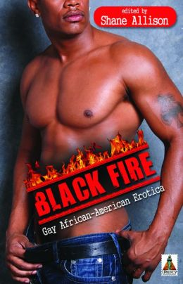 African American Gay Books 15